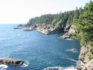 A view of the rough Pacific coast from the West Coast Trail